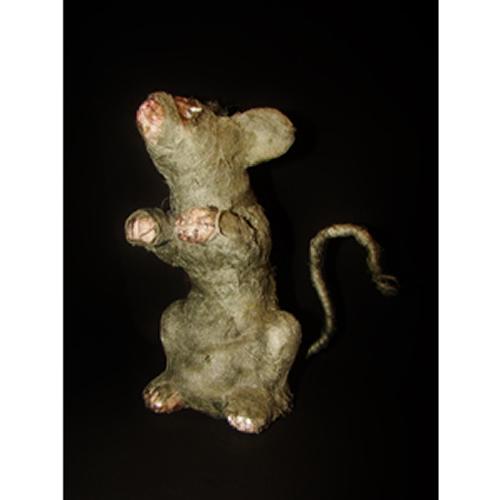 Rato-múmia-790
